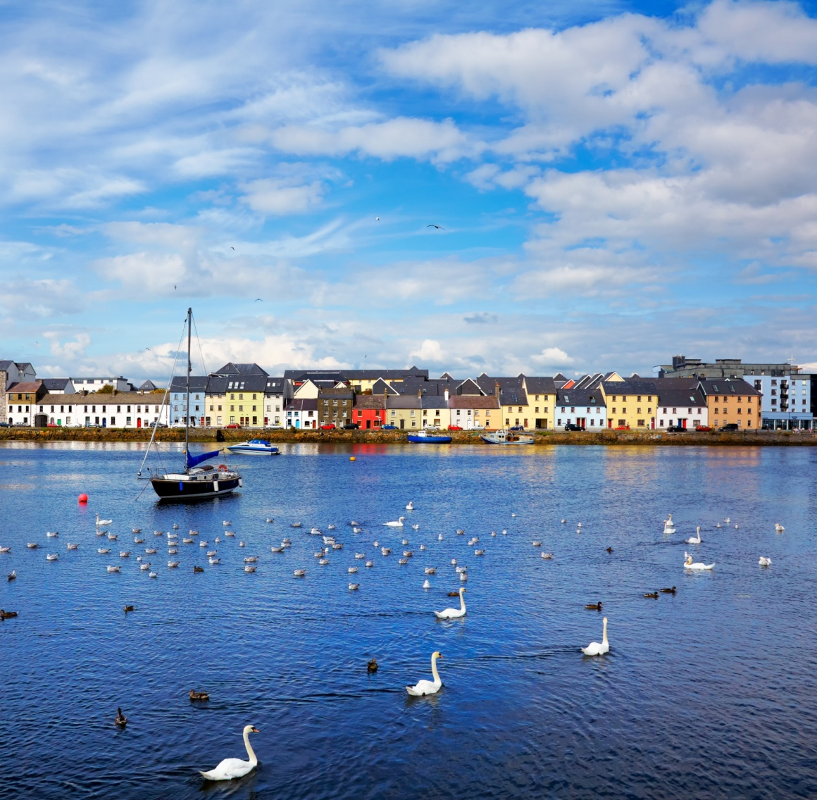 'The Claddagh in Galway city during summertime, Ireland.' - Ireland